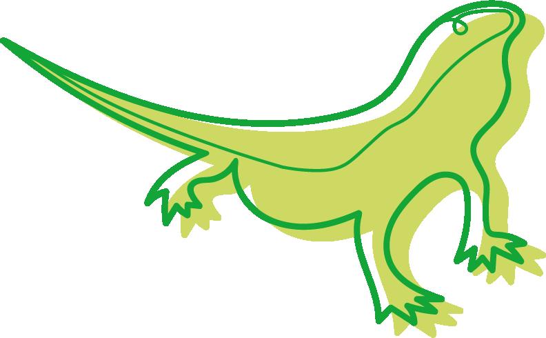 image d'illustration Les reptiles