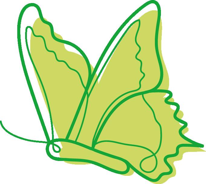 image d'illustration Les insectes